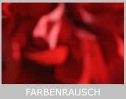 farbenrausch-2-icon-mt