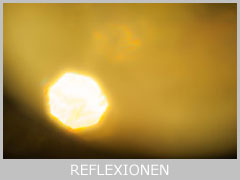 icon-reflexionen-mt