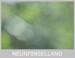 neunpinselland-icon-tx-r